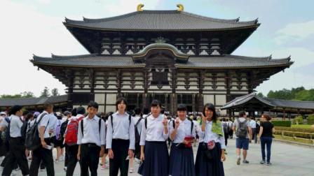 奈良公園(圧縮).jpg